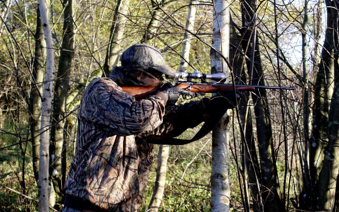 Hinweise der Unteren Jagdbehörde des Landratsamtes Lindau zur Durchführung von Bewegungsjagden.