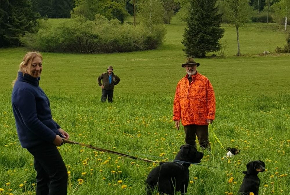 Jäger und freiwillige Tierfreunde vom Jagdrevier Heimenkirch Nord-Ost retten Rehkitze vor dem sicheren Mähtod